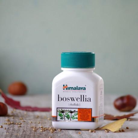 Boswellia Himalaya - Zdrowe stawy i kości