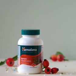 Boerhaavia zdrowy układ moczowy - Himalaya